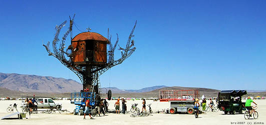 Burning Man Festival 2007